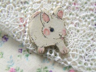 春の新作 白ウサギちゃんがやってきます!の画像