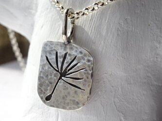 風にふわり【silver950/オーバーレイ】の画像