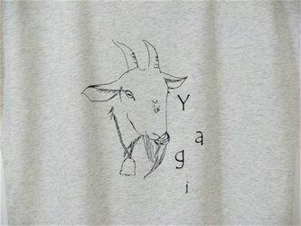 【L】Yagi ドルマンTシャツ レディースの画像