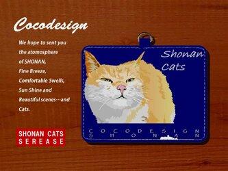 湘南Catsパスケース 007 シルバー猫  ストラップ付きの画像