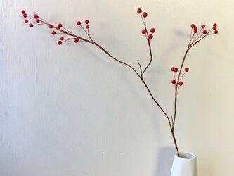 赤い実の枝 50の画像