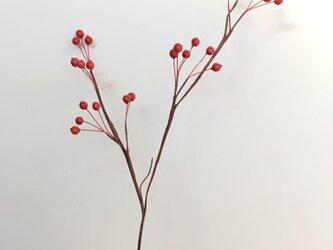 再販  赤い実の枝 40の画像