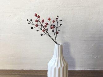 小さな赤い実の枝とワイヤーの枝の画像