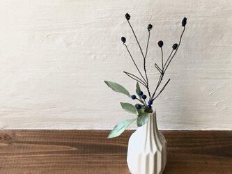 ワイヤーのワレモコウと青い実の枝の画像