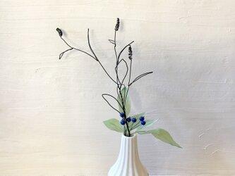ワイヤーのオオイヌフグリと青い実の枝の画像