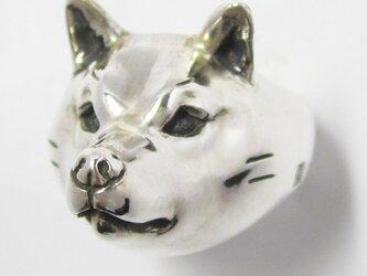 柴犬/成犬RING(中)の画像