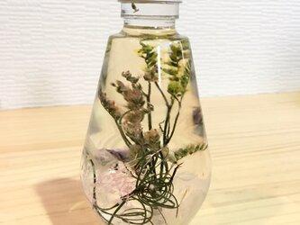 スターチス ☆*。ハーバリウム 植物標本 インテリア☆*。の画像