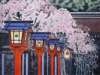 黄昏桜の画像