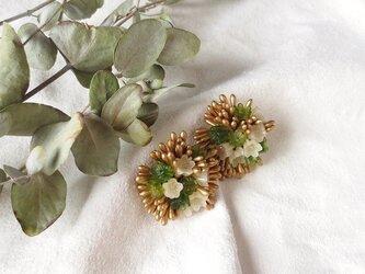 小花×ネコヤナギ 花束イヤリングの画像