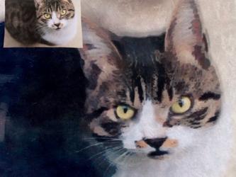 ペットの似顔絵♡の画像