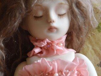 桜色の画像