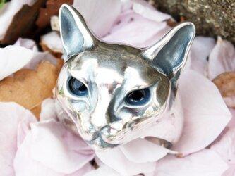 猫リング(瞳入りver.)の画像