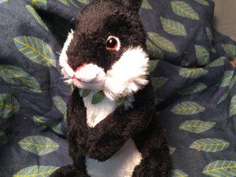 立ち型ウサギ(ブラック)の画像