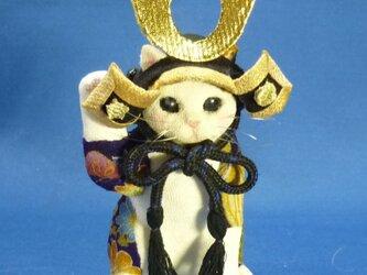 端午の節句には猫武者、普段はしっかり招き猫の画像