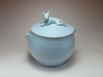 アイスブルー・クッキージャー・ワンコー5の画像