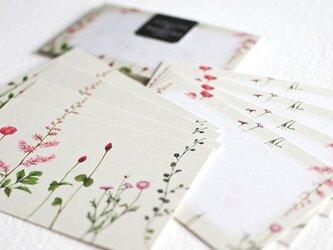 ピンクの花たちのメッセージカードの画像