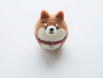 まゆ柴犬 ジルコニアチャーム(ハート、ラウンド)付き首輪 羊毛フェルト※受注製作の画像