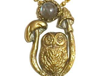 ✴︎再販です✴︎妖精詩集/フクロウの夜(フクロウ+キノコ+天然石:真鍮製)の画像