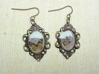 【非売品】プレゼント専用2匹の蝶のピアスの画像