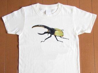 受注プリント全4色☆Tシャツ「ヘラクレス(胸に大きく)」オリジナルデザイン☆大人から子供まで全てのサイズ対応の画像