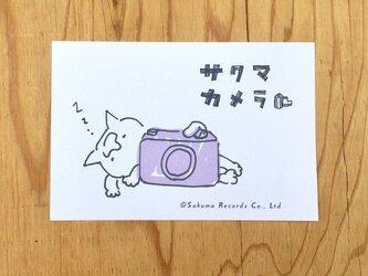 サクマカメラポストカード カメラの奥で熟睡するサクマの画像