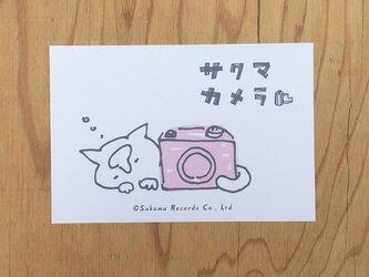 サクマカメラポストカード カメラの奥で寝るサクマの画像