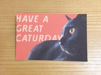 黒猫ポストカード HAVE A GREAT CATURDAYの画像