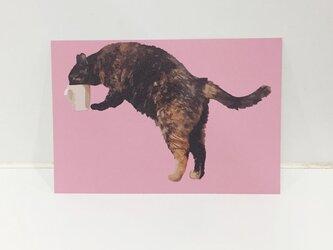 水のみサビ猫ポストカードの画像