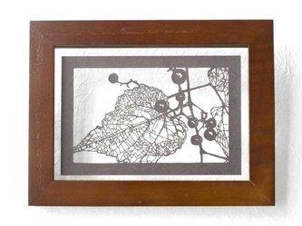 切り絵 野葡萄 フローターフレーム 透明背景 濃灰の色渋紙の画像