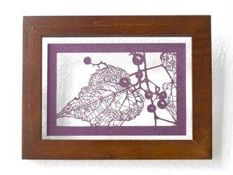 切り絵 野葡萄 フローターフレーム 透明背景 深紫の色渋紙の画像