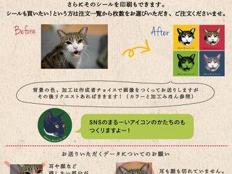 ■画像お渡し■あなたのネコ(イヌでもOK!)切り抜き加工します★SNSのアイコンなどに(*^^*)の画像