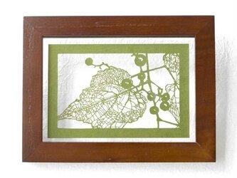 切り絵 野葡萄 フローターフレーム 透明背景 抹茶の色渋紙の画像