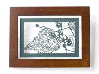 切り絵 野葡萄 フローターフレーム 透明背景 青グレーの色渋紙の画像