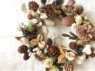 木の実とモスの彩り リースの画像