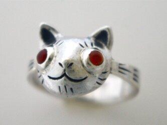 猫のリングの画像