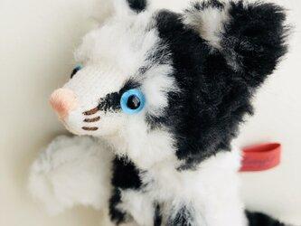 シャトン・オレオ 子猫のぬいぐるみ ギフト 母の日 プレゼントの画像
