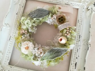 【送料無料】ダリアとラムズイヤーのgreen wreathの画像