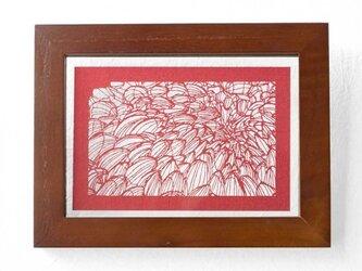 切り絵 菊 フローターフレーム 透明背景 赤の色渋紙の画像
