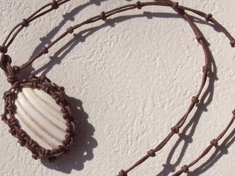 shell necklace #2の画像
