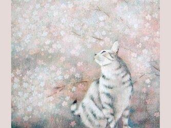 送料無料☆複製画 灰桜(光沢)の画像