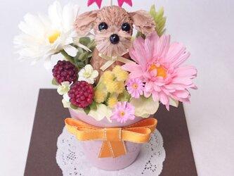 [母の日特別期間限定 送料無料!]お花で作ったワンちゃん「ちいさな友だち ~トイ・プードル茶~ 」カラー陶器アレンジの画像