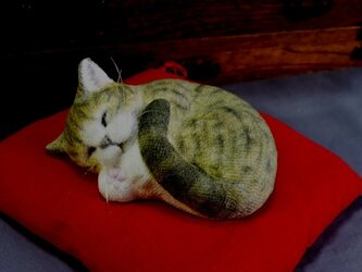 手乗り猫 アンモニャイト キジトラ猫さん 座布団付の画像