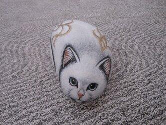 石猫 「せいめい」の画像