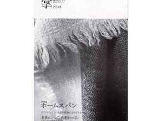 書籍「掌2013」の画像