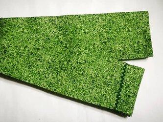半幅帯  「芝生」の画像