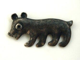 小熊の画像