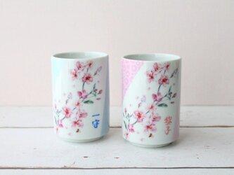 【母の日に】桜の名入れペア湯呑茶碗の画像