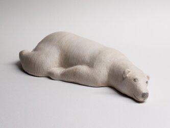 シロクマ15 Polar bear15の画像