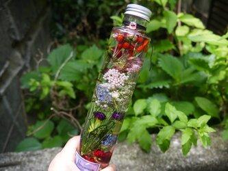 春の陽だまり・ハーバリウム【カーネーション・可憐な小花】フラワーボトルの画像
