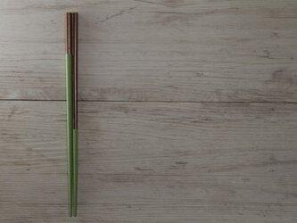 漆箸 - くつした 緑 -の画像